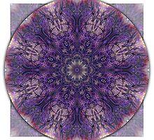 Crown Chakra Mandala 2a by haymelter