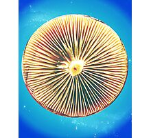 Space Disc Photographic Print