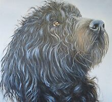 Rufus - final by Carole Russell