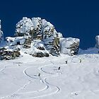 Summit of Treble Cone by Charles Kosina