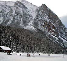December in the Canadian Rockies by Nancy Richard