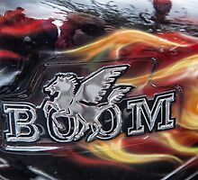 Boom  by Judi Lion