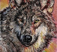 Portrait of a Gray Wolf by JMcCombie