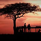 Tanzanian Sunset Safari by phil decocco