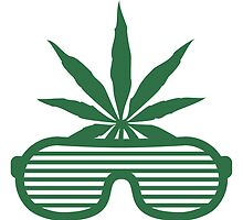 Weed Party Glasses by Style-O-Mat