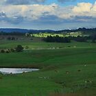 Green Pastures by myraj