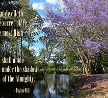 Under the Shadow - Psalm 91:1 by JLOPhotography