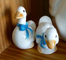 Duck Shakers by WildestArt