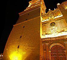 ©MS Catedral De Morelia IIIA by OmarHernandez