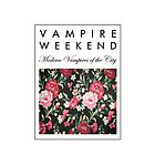 Vampire Weekend by sdunaway