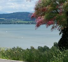 Swiss lake view by Amadeus-ch
