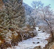 Boulder Creek Winter Wonderland by Bo Insogna