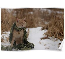 Gumbo Sitting in Snow Poster