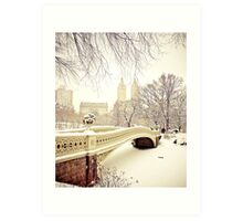Winter in Central Park Art Print