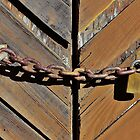 Old Chain on Old Doors by Martha Sherman