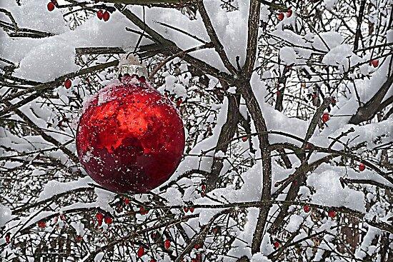 Red Ornament by Sheri Nye