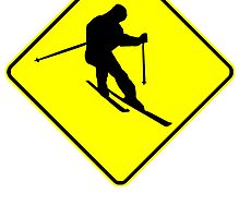 Skier Crossing Sign by kwg2200