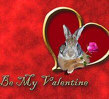 Be My Valentine Bunny Rabbit by jkartlife