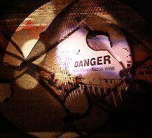 Danger by Kim Evangelista