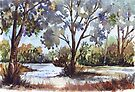 Blue gums. The first light of day by Maree  Clarkson