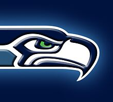 Seahawk by Mikeb10462