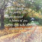 Psalm 16 11 Shew Me the Path by Susan Savad