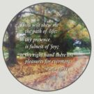 Psalm 16 11 Thou wilt shew me the path by Susan Savad