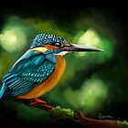 Common Kingfisher by Richard Eijkenbroek