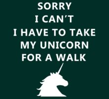 Sorry I can't, I have to take my unicorn for a walk by artemisd