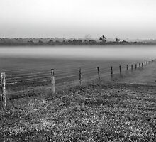 Fenceline by shuttersuze75