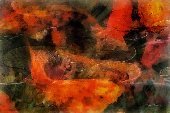 Orange koi dreams with lilies by Celeste Mookherjee
