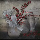 Merry Christmas  by Johanna26