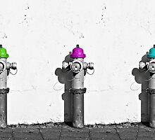 Fire Hydrants by dkaranouh