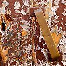 Peeling Door by Rae Tucker