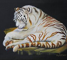 White Tiger Sleeping by Phyllis Beiser