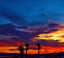Multi Color Sunset by tvlgoddess