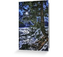 Wall art winter scene snow in the forests and frozen lake of the Alps - color photo - I colori dell'inverno Greeting Card