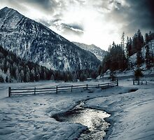 Alpine meadow under the snow - color photo - Dove l'inverno bacia il cielo by visionitaliane