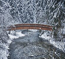 Bridge over river in the forest with snow - fine art color - Il ponte nel bosco by visionitaliane