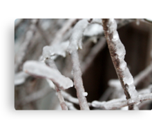 A Layer of Ice Canvas Print