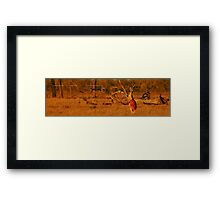 BIG RED - Australian Nature Framed Print