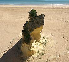 Beach Tressure by Janone