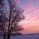 Pink Clouded Sunrise by lorilee
