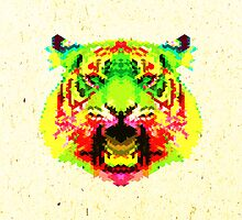 Tiger by fimbisdesigns