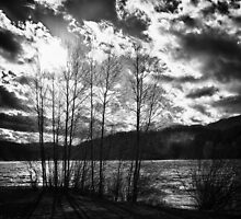 Black and white dramatic contrast landscape fine art wall art - Freddo by visionitaliane