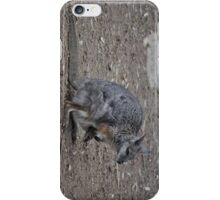 Wallaby & Joey iPhone Case/Skin