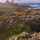 Corsewall Lighthouse by Tim Haynes