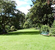 A Bench to rest on! Botanic Gardens, Geelong. Victoria. by Rita Blom