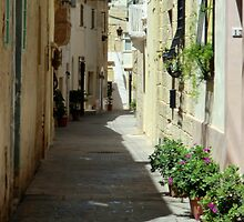 Malta Streetscape Two by Dansam1