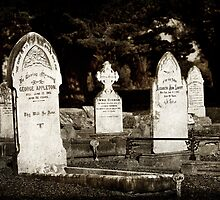 Graveyard Adornments #10  by Malcolm Heberle